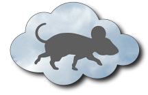 Cloudy Mouse Web Design